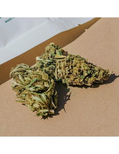Root Wellness Hemp Flower Bud Bag 1